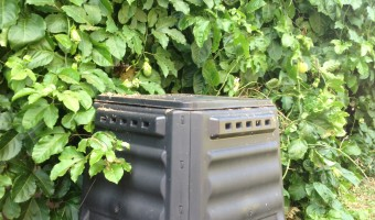 Top 5 Reasons Why I Love Composting